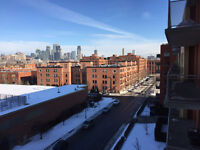 Atwater market / Lachine canal / South-West district