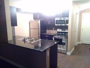 BRAND NEW ~1000 sqft 3 bedroom 2 bathroom executive condo