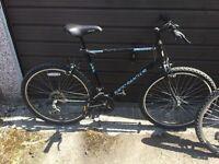 Two mountain bikes one gents one ladies
