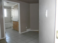 NEWER BRIGHT SPACIOU BASEMENT IN COALDALE AVAILABLE FEB.