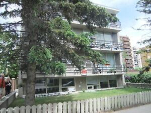 Perfect Location Beltline 1 BD suit  Available now 10st &15av sw