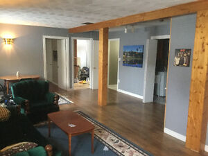 Basement with bedroom for rent in the Goulds