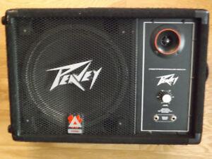 Pevey monitor speaker