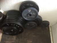 292kg olympic weight plates