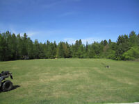Land in Kawartha Lakes For Sale