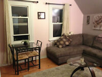 FOR RENT: One bedroom apartment (Centretown, near Little Italy)