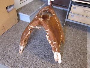 Donkey saddle Kitchener / Waterloo Kitchener Area image 1