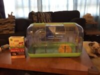 Great beginner hamster cage