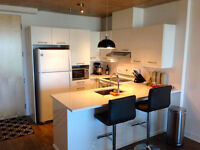 3 1/2 (780pc) Griffintown 12th floor with INDOOR PARKING + A/C