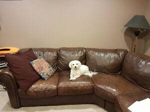 Leather Sectional Couch/Sofa Brown real leather
