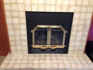BIS zero clearance wood burning fireplace with blower