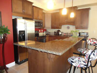 Fully furnished high end apartment across TRU