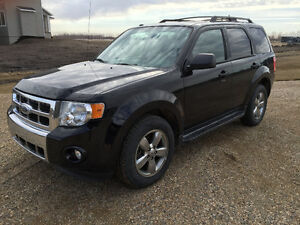 2009 Ford Escape XLT SUV, AWD