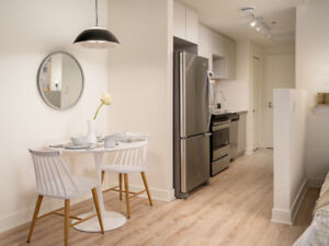 Old Port Montreal-New Condo Apartment for rent-Studio-VilleMarie