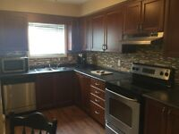 1 Bedroom - Modern and Clean - Available July 15 - YP Perfect