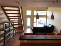 Centrally located modern, clean and spacious Condo for rent.