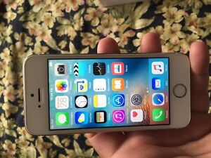 IPhone 5s gold 16 gb with roger