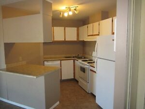 DOWNTOWN 2 BEDROOM APARTMENT AVAILABLE!!!!