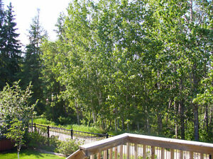 UNBEATABLE RAVINE LOCATION!  CUSTOM 4 BED BUNGALOW IN DEVON Edmonton Edmonton Area image 3