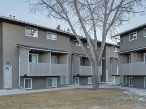 3 Bedroom Town House For Rent GREAT LOCATION $990 Monthly