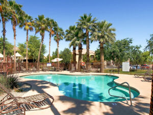 40% OFF SALE Nice Vacation Home in Gated Central Phoenix!