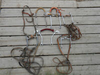 Horse halters and western bits great package deal