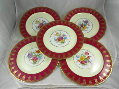 Fabulous Dinner Plates (Fabulous Used PARAGON Set of 5 Dinner Plates Gold Filigree and Floral on)