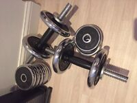 20kg Golds Chrome Gym Weights Set £25
