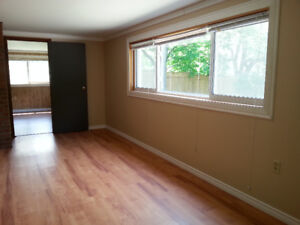Large One Bedroom/Lower half Private home - Rossmore