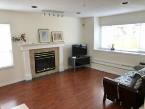 Three Bedroom Duplex Marpole Vancouver