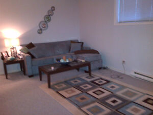 PARTIALLY FURNISHED CONDO - AVAILABLE TODAY!