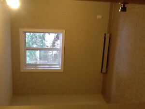 one room for rent in a two-bedroom-apartment.. roommate