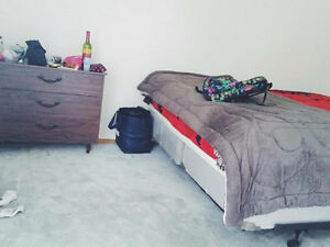 Everything included! December to August sublet! Kitchener / Waterloo Kitchener Area image 2