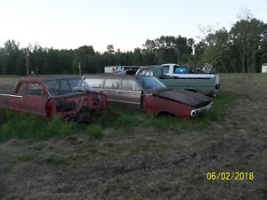 Yard Cleanup Car bodies for sale