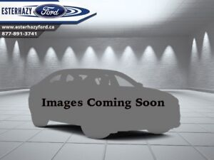 2010 Ford F-150   - Low Mileage