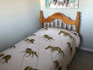 Solid Pine Twin Bed & Almost new Mattress
