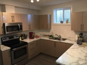 Two Bedroom Fully Furnished Suit Availble now
