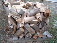 TOP QUALITY FIREWOOD FOR SALE !