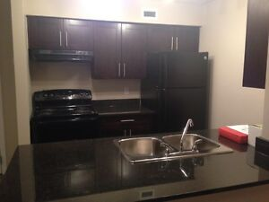 Modern Condo 2 BR + Den  in SW Edm  Available from 1st February