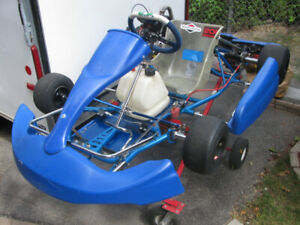 Briggs Race | Kijiji in Ontario  - Buy, Sell & Save with