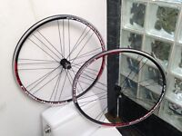 BRAND NEW CAMPAGNOLO KHAMSIN WHEELSET - CLINCHER *MANY AVAILABLE