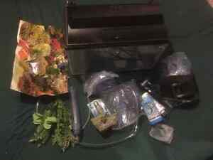 Fish tank with a ton  of accessories Cambridge Kitchener Area image 5
