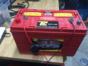 Batterie Marine Deep Cycle Big Red DC31-280