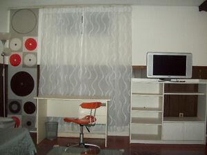 Large & Quiet Studio Suite Bachelor 370 sq. ft.
