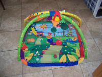 Baby Einsteins Play Mat (Gone Pending Pick Up)