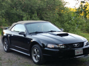 2001 Ford Mustang G.T Convertible BLOW out SALE