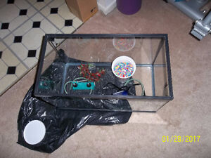 10gal Glass Fish Tank