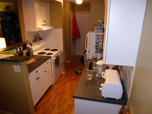 One Bedroom apartment in Mission, 24 ave 2 st SW