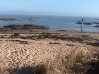 Self catering cottage on beach , 6th to 13th August available, pet friendly