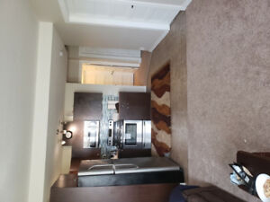 Immaculate two bedroom walk out suite for rent  starting Sep 1st